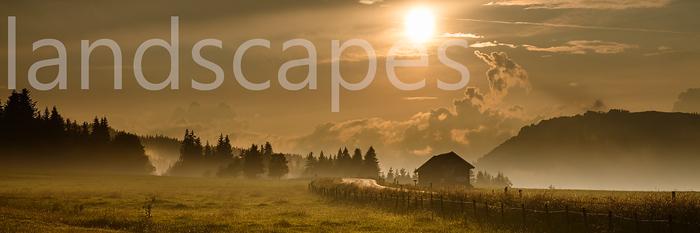 landscapes-thumb