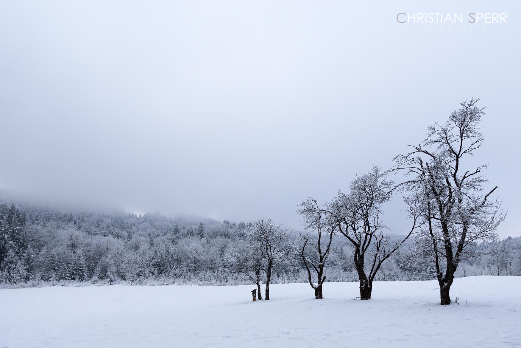 sperr-landscapes-01-13