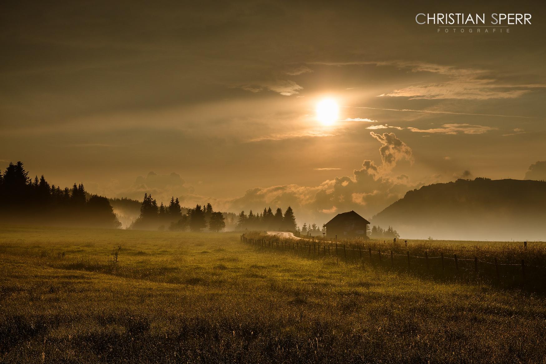 sperr-landscapes-01-17