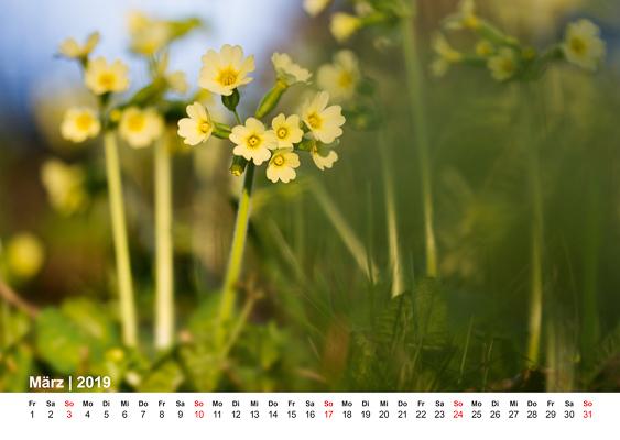 christian-sperr-fotografie-kalender-attersee-2019-4